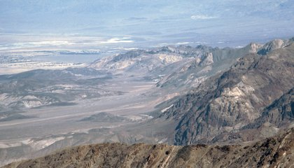 National Park Service Seeks Public Help in Death Valley Fossil Theft