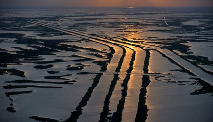 The Mississippi River Carries More Than Enough Sand to Rebuild Its Sinking Delta