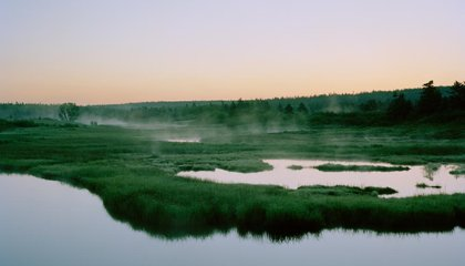 A Photographer Captures Emptiness and Longing in Longfellow's Nova Scotia