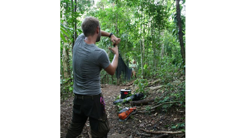 Stephan Brändel and Julian Schmid, both doctoral students from the University of Ulm, set up a net for our night of trapping