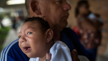 How Can Viruses Like Zika Cause Birth Defects?