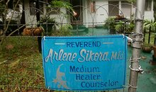 Rev Arlene Sikora medium healer counselor
