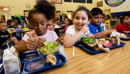 Childhood Obesity in the United States Is Decreasing