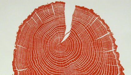 Covered in Ink, Cross-sections of Trees Make Gorgeous Prints