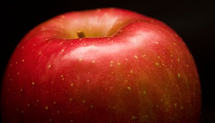 Climate Change Is Altering the Taste and Texture of Fuji Apples