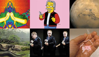 Our Ten Most Popular Stories of 2012