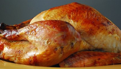 The Science of Cooking a Turkey, and Other Thanksgiving Dishes