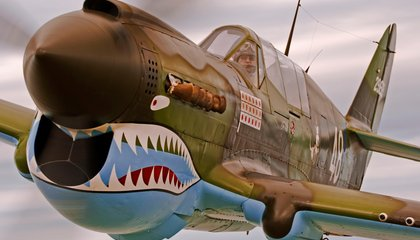 P-40 Warhawks and Flying Tigers