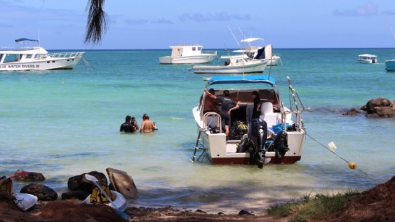 Tourists dip into the water in Mauritius.
