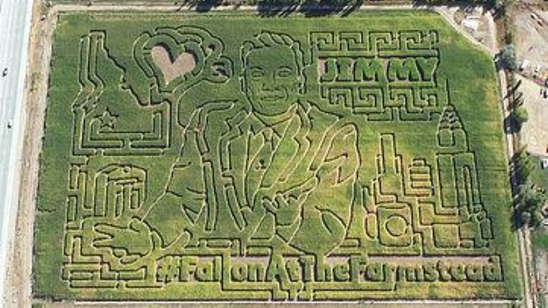 Jimmy Fallon takes center stage in the Farmstead's corn maze.
