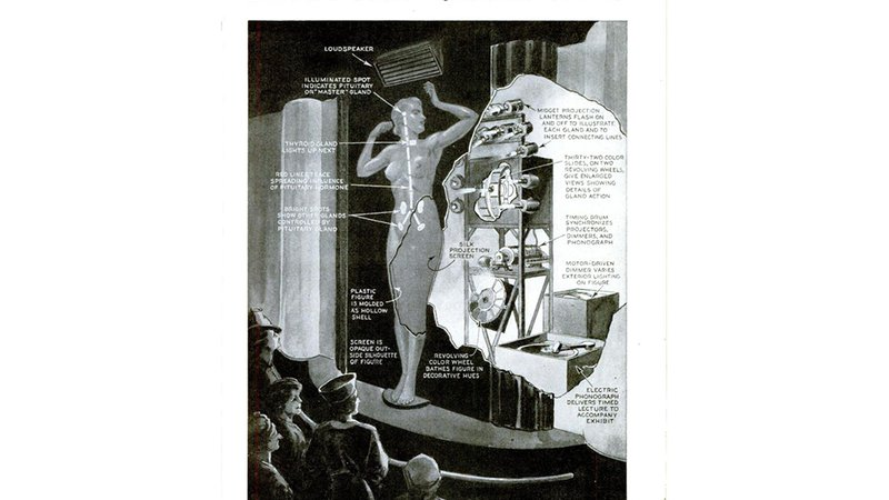 Popular Science described a model from the 1939 World's Fair, an alternative to real human specimens.