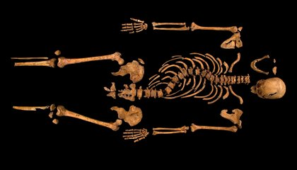 They Found Richard III. So Now What?