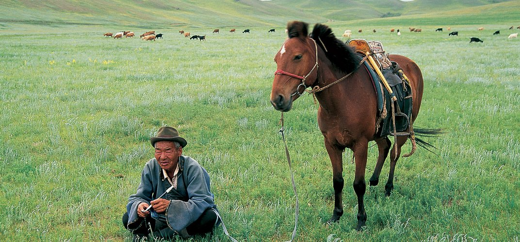 Mongolian nomad on the steppes
