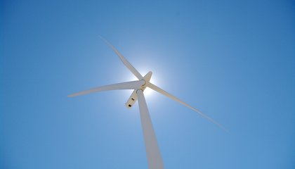 Myth Debunked: Wind Farms Don't Alter the Climate