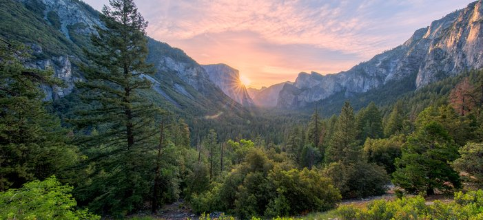Treasures of Yosemite <p>During this&nbsp;adventure, take leisurely hikes to discover the towering cliffs, expansive vistas, cascading waterfalls, and wide diversity of wildlife that comprise this World Heritage site.</p>