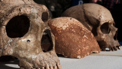 Humans May Have Had Romantic Rendezvous With Neanderthals 100,000 Years Ago