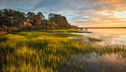 Explore 90 Newly Preserved Acres in South Carolina's Historic Lowcountry