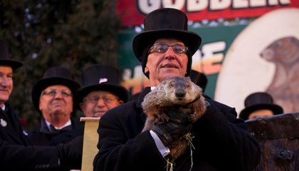 Meet the Inner Circle That Runs Groundhog Day