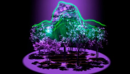 The International Space Station Will Soon Be Able to Measure Forest Density Using Lasers