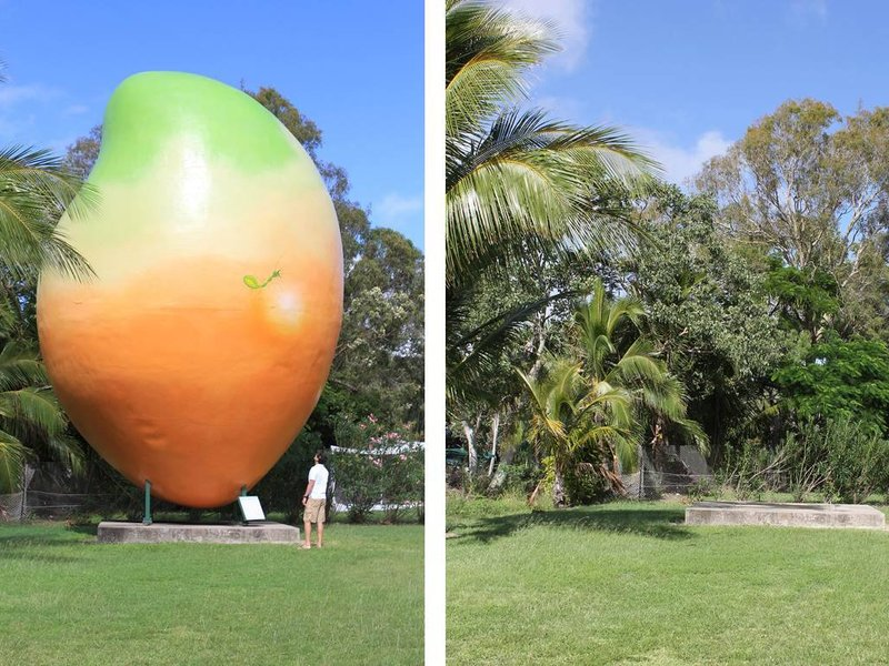 Before and After: Where has the Mango Gone?
