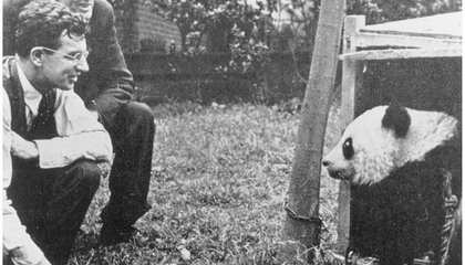 How an American Missionary Helped Capture the First Panda Given to the U.S.