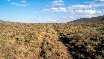 Nine Places Where You Can Still See Wheel Tracks from the Oregon Trail