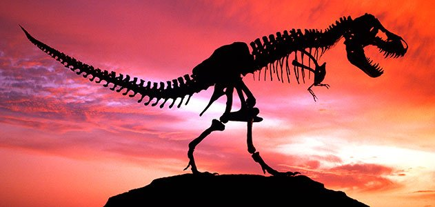 dinosaur-extinction-theories-top-ten-large.jpg