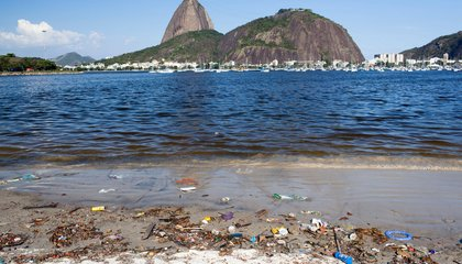 Why the International Olympic Committee is Worried About Water Quality in Rio