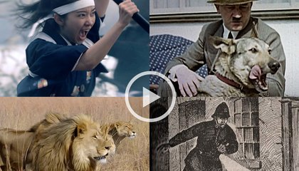 Our Top Ten Videos of 2015