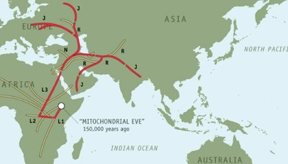 One Man's Seven-Year March Along Ancient Migration Routes