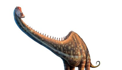 How Long-Necked Dinosaurs Pumped Blood to Their Brains