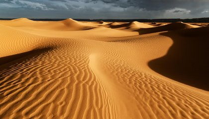 What Really Turned the Sahara Desert From a Green Oasis Into a Wasteland?