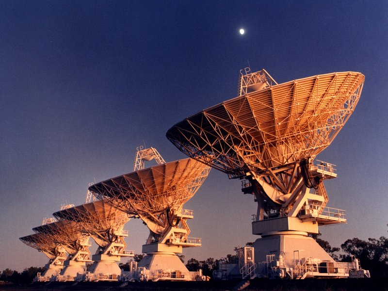 CSIRO Antennas_at_Narrabri.jpg