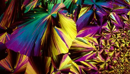 What Does Your Favorite Drink Look Like Under A Microscope?