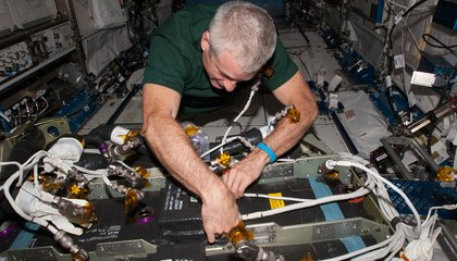 Why Living in Space Can be a Pain in the Head
