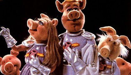 Shenzhou's Pigs In Space