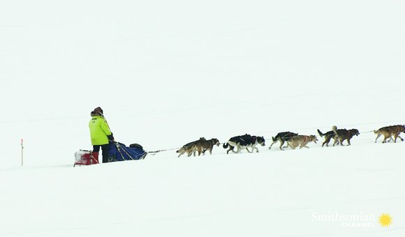 Preview thumbnail for video'How a Diphtheria Outbreak Spawned the Iditarod